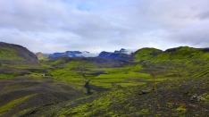 Icelandic desert!